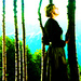 Maria von Trapp - the-sound-of-music icon
