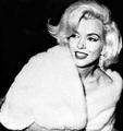 Marilyn1234567