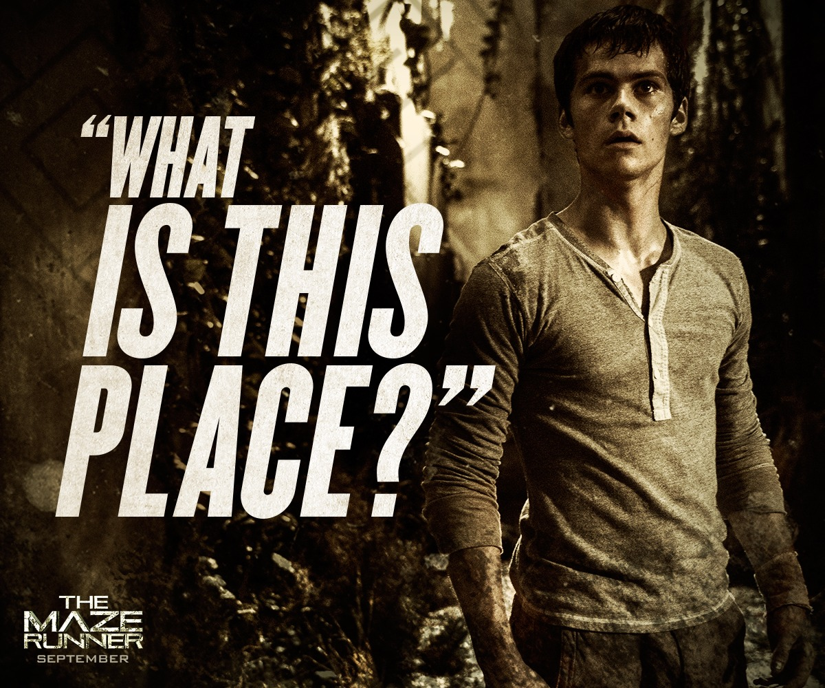 The Maze Runner Film images Movie Quote HD wallpaper and