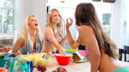 WWE Divas wallpaper possibly with a portrait entitled NXT's Summer Vacation - House Party