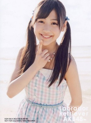 Nishino Miki - Labrador Retriever