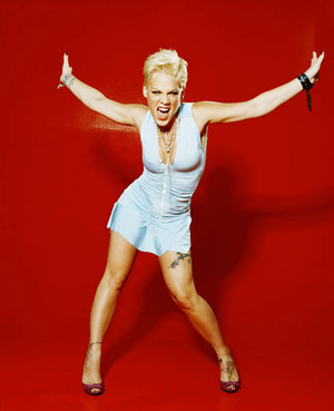P!nk 照片 Shoots, and Pictures