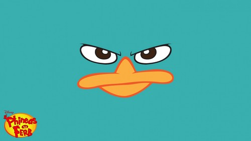 phineas y ferb fondo de pantalla probably containing anime called Perry