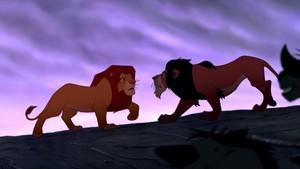 Poor Simba!