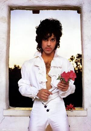 Prince <333