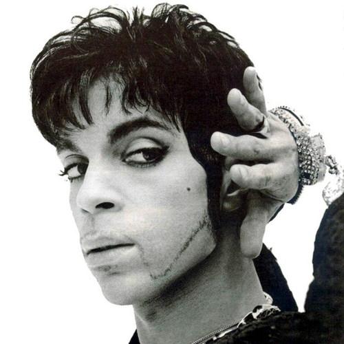 Prince fond d'écran called Prince Pictures