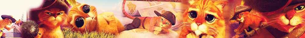 Puss in Boots - Banner Suggestion 2