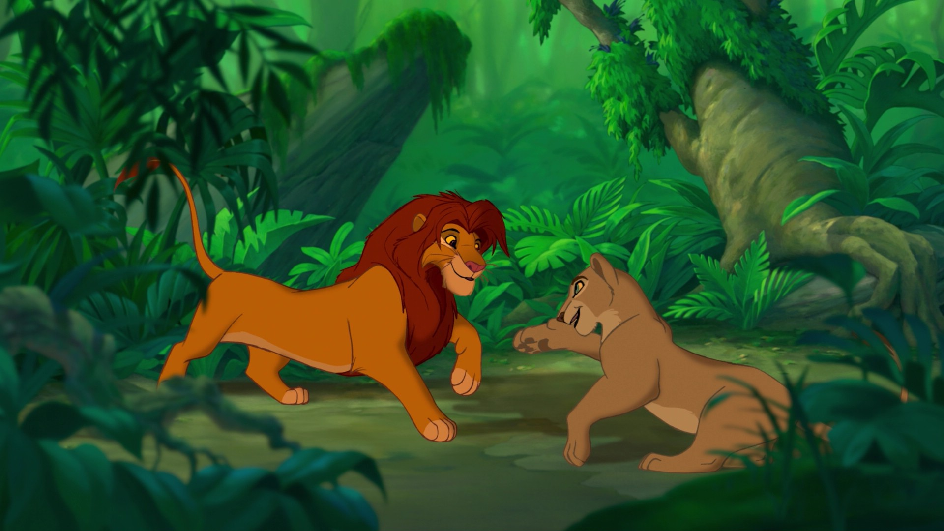 Simba Nala Images Reunion In The Jungle Hd Wallpaper And