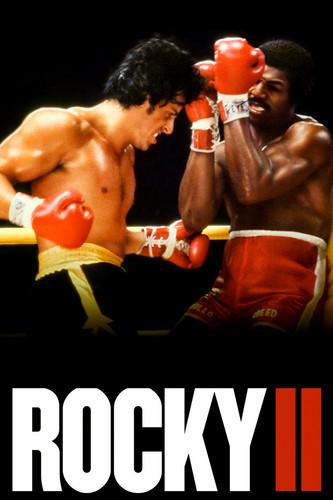 Rocky wallpaper entitled Rocky 2