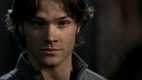 Sam Winchester wallpaper possibly with a portrait titled Sam