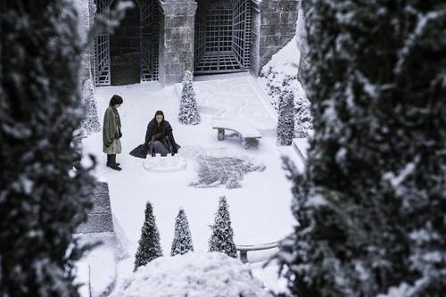Sansa Stark Hintergrund containing a snowbank, an igloo, and a ski resort titled Sansa Stark and Robin Arryn