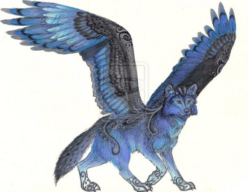 anime animal achtergrond titled Sky the blue winged wolf