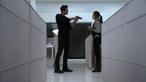 Skye and Ward (1x22)