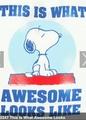 Snoopy is awsome