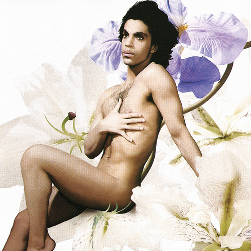Prince wallpaper probably with a bikini and skin entitled The Amazing PRINCE