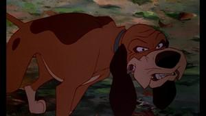 Walt Disney Screencaps - Copper