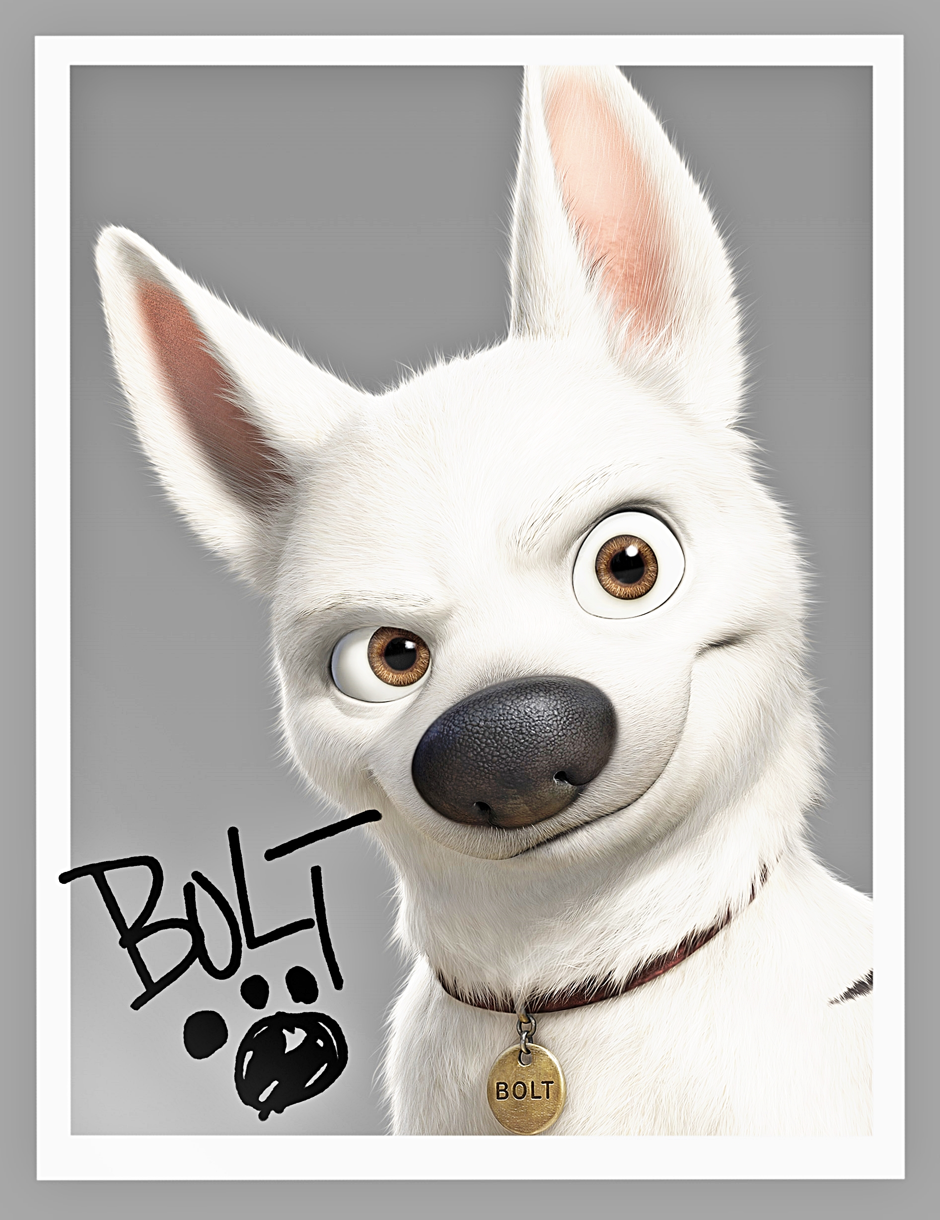 Walt Disney Posters - Bolt - Walt Disney Characters Photo ...