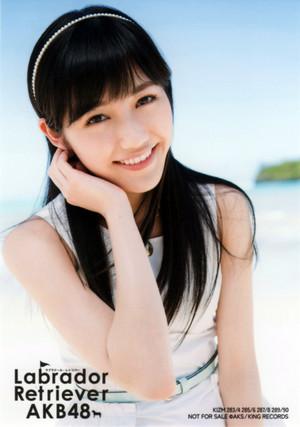 "Watanabe Mayu ""Labrador Retriever"""