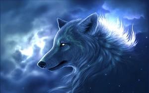 wolf Spirit <3