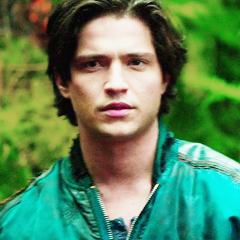 The 100 (TV Show) achtergrond probably containing a portrait entitled finn collins