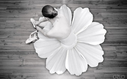 Ballet wallpaper with a bouquet and a rose titled bunga tutu