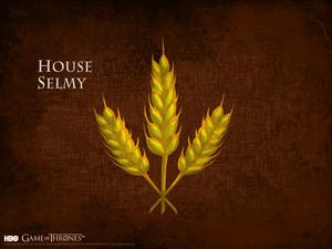 House Selmy
