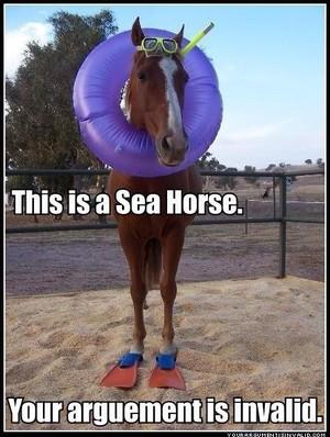 sea horse :D