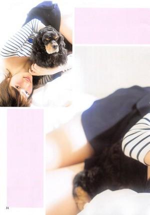 [AKB48 no Inu Kyoudai] Shimazaki Haruka