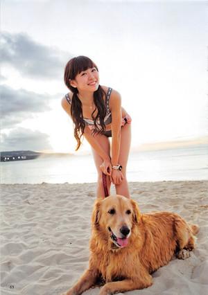 [AKB48 no Inu Kyoudai] Watanabe Miyuki