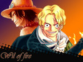 *Ace Will Live Through Sabo* - one-piece photo