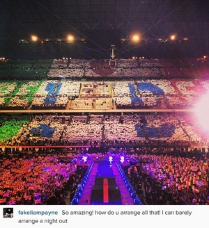 One Direction, Where We Are Tour Milan (29.06.2014) - x