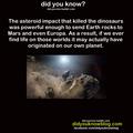 Alien Earth Life