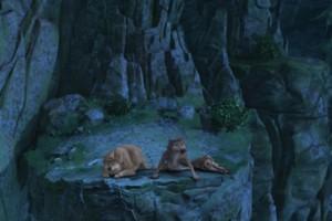 《丛林有情狼》