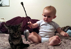 Baby Playing With A Kitten