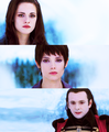 Bella,Alice,Aro - twilight-series photo