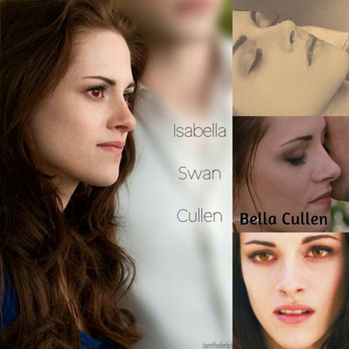 Bella Swan wallpaper containing a portrait titled Bella Cullen