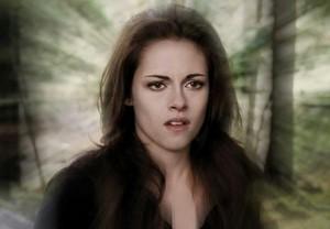 Bella's shield