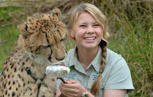 Bindi Irwin achtergrond possibly with a cheetah titled Bindi Irwin