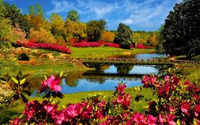 Brightening with Flora