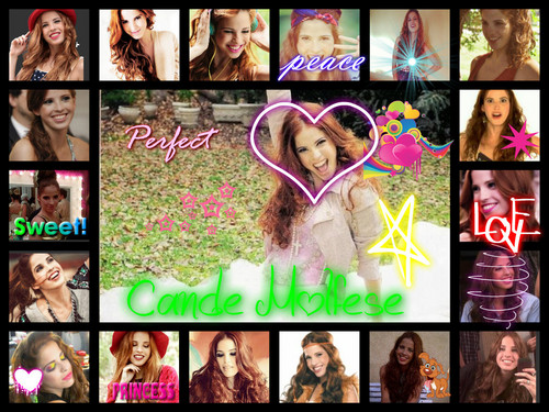 Violetta wallpaper probably with anime called Candelaria Molfese