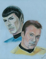Captain and Commander - star-trek fan art