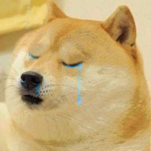 Crying-Doge-random-37222351-600-600.jpg
