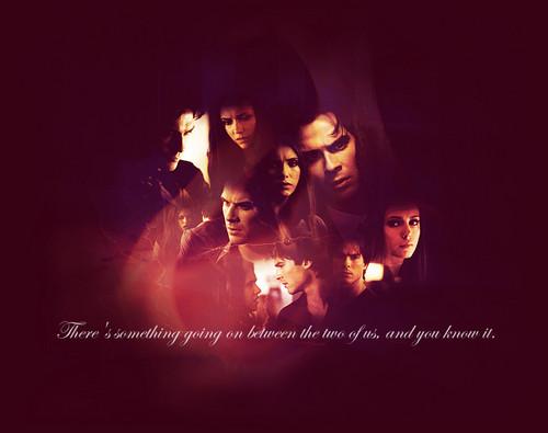 Stelena vs Delena پیپر وال containing a آگ کے, آگ and a آگ کے, آگ entitled Damon n Elena
