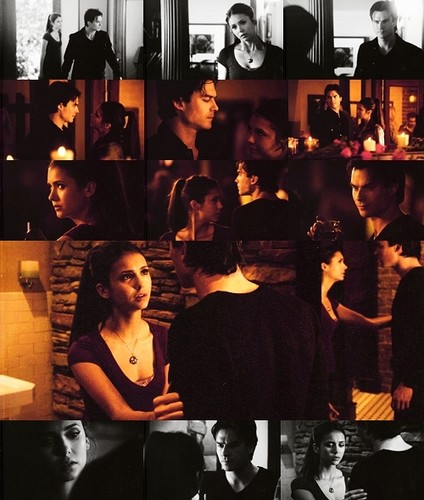 Stelena vs Delena hình nền called Damon n Elena