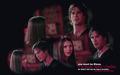 Damon n Elena پیپر وال