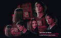 Damon n Elena wallpaper