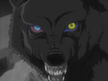 Darcia's Eyes - wolfs-rain photo