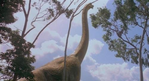 Nocturnal Mirage fond d'écran called Diplodocus Jurassic Park