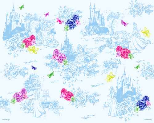 Disney Princess پیپر وال titled Disney Princesses پیپر وال
