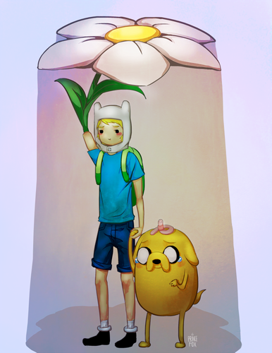 Adventure Time With Finn and Jake wallpaper probably containing a lampshade called Finn's flower umbrella